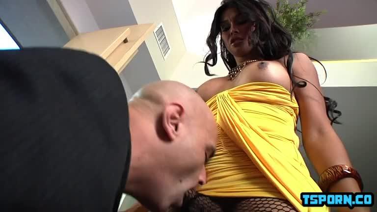 Big Ass Big Dick Shemale
